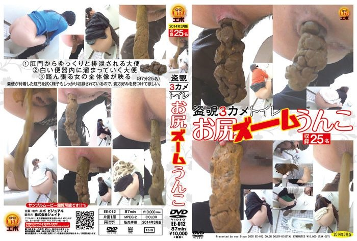 [EE-012] 盗覗3カメトイレ お尻ズームうんこ 盗撮 脱糞 2014/03/09 Toilet